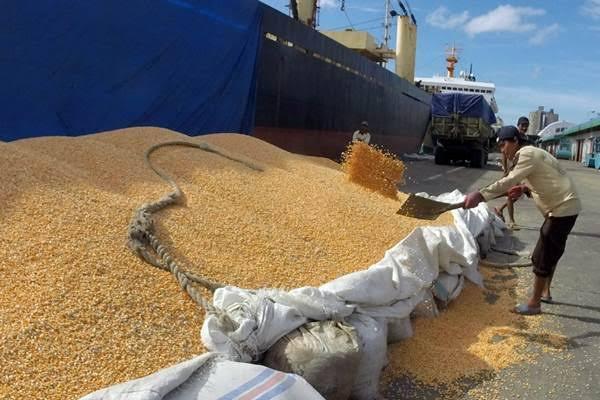 ekspor jagung ke Filipina