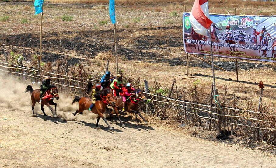Joki Kecil Ramaikan Main Jaran Dalam Festival Moyo 2015