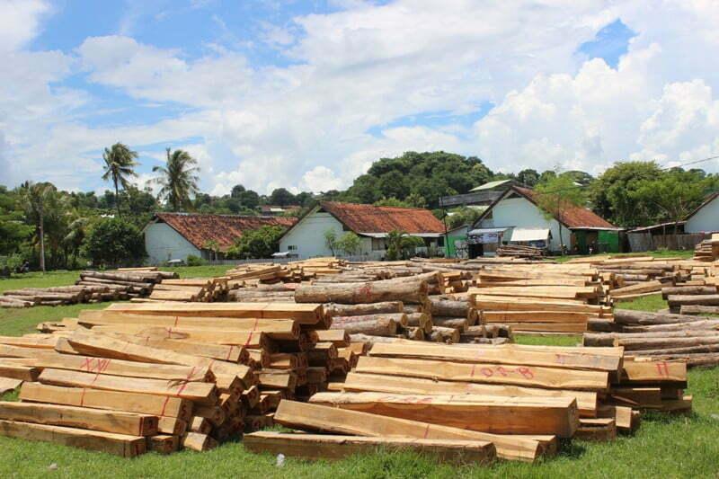Kayu Ilegal Loging