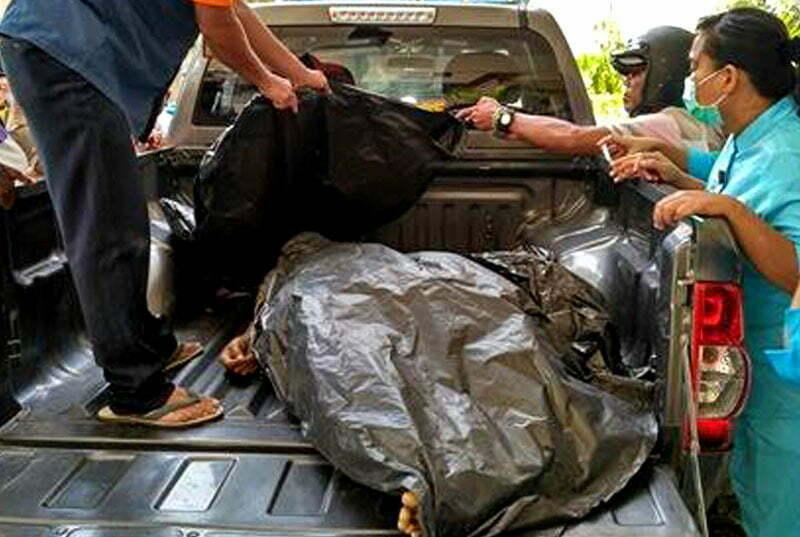 SAPI'IN tewas tertimpa phon di jalan brawijawa kota mataram