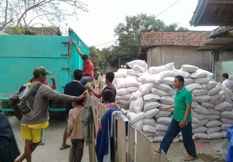distribusi jagung gratis