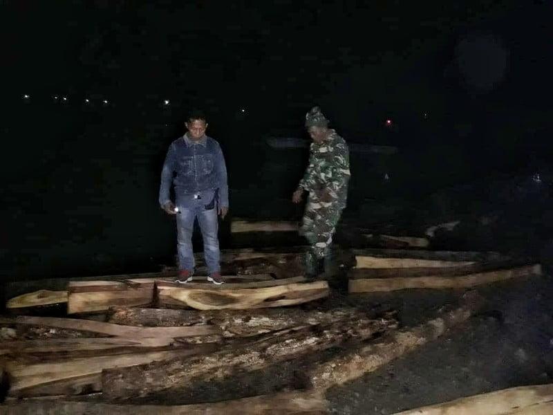 penangkapan kayu