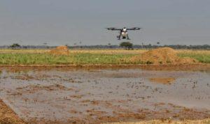 Pertanian Empat Kosong (2)