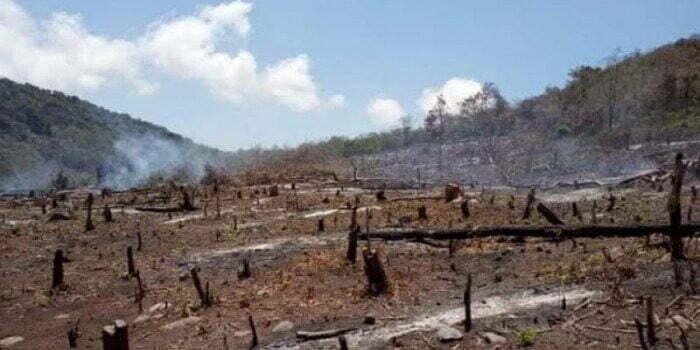 hutan tandus sumbawa