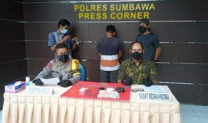 bandar narkoba labu burung Kabar Sumbawa